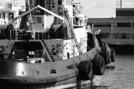 boat8-min